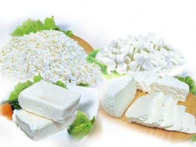 види сиру для дітей різновиди